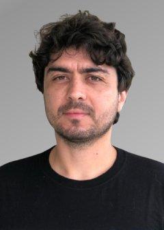 Mirko Perkusich