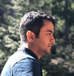 Navid Salehnamadi